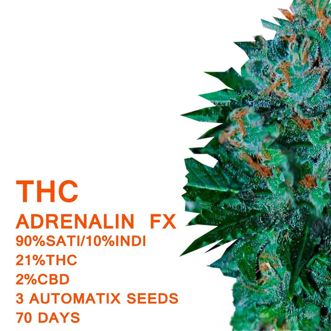 Adrenalin FX | Seedworx Laboratories